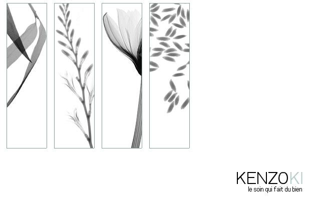 keneoki.jpg