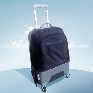 poids valise avion pour 2 personnes air france choix de l 39 ing nierie sanitaire. Black Bedroom Furniture Sets. Home Design Ideas