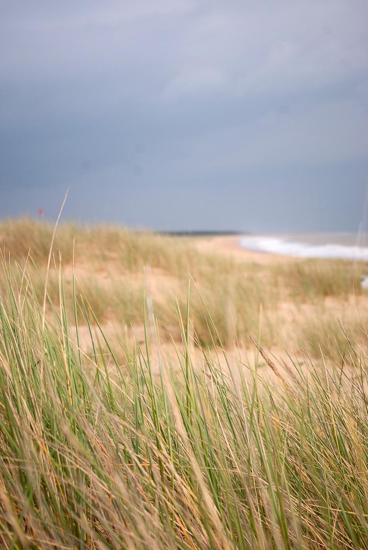 Plage-lafaute-sur-mer-dune-5