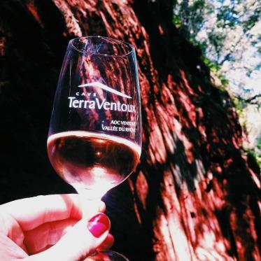 degustation-rose-canyon-vaucluse
