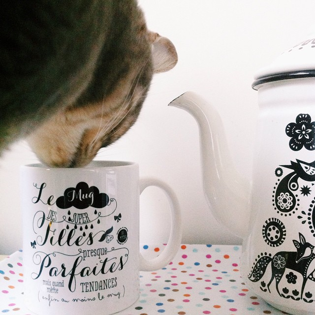 mug-crea-bisontine-filles-parfaites