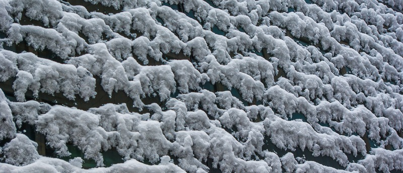 bruxelles-neige