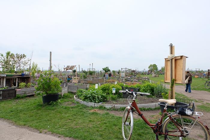 Tempelhof garden