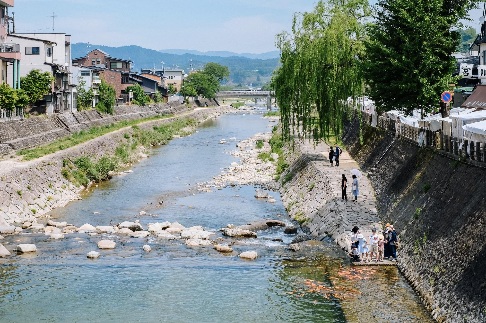 Famille qui nourrit des carpes koi à Takayama